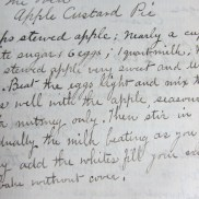 original Apple Custard Pie recipe