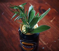 Cider Can with Herbs | Food Through the Pages