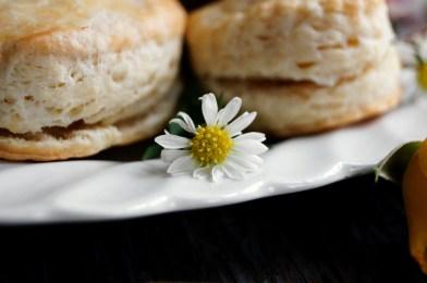 Pop Biscuits | The Faraway Tree